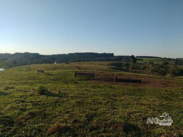 Fazenda à venda, 2699994 m² por r$ 6.500.000 - rural - reserva do iguaçu/pr - Foto 2