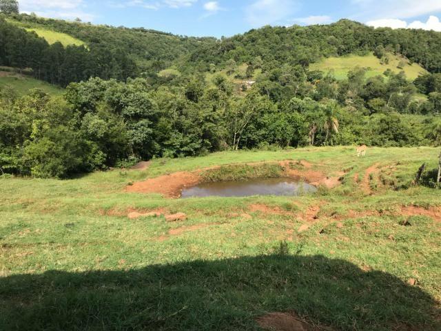 Área Rural - Foto 7