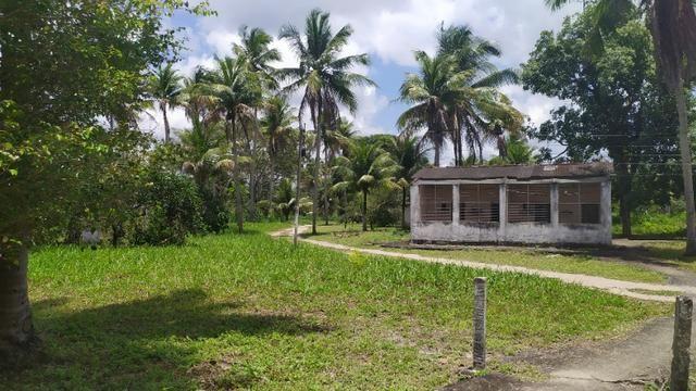 Vende-se excelente sitio em Igarassu, bem localizado - Foto 16