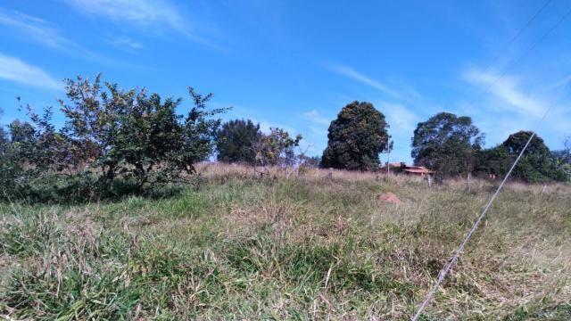 Fazenda 31 hectares em Curvelo/MG. - Foto 9