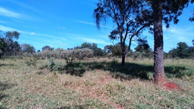 Fazenda 31 hectares em Curvelo/MG. - Foto 12