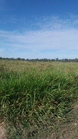 Fazenda c/ 4.985he, c/ capac. p/ 2.000 novilhas, Araguaiana-MT, preço bom