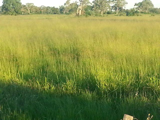 Fazenda em Corumbá - MS. 20.070 hectares - Foto 5