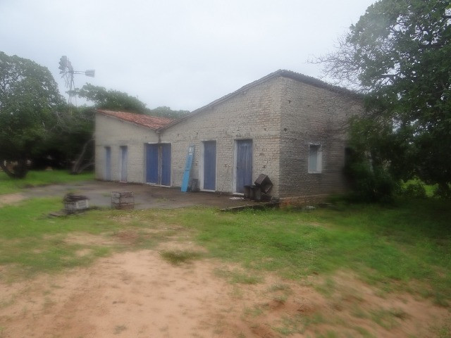 Fazenda sao paulo do potengi - Foto 2