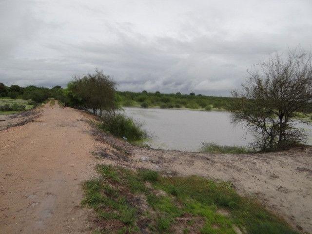 Fazenda sao paulo do potengi - Foto 6