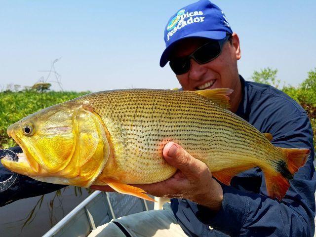 Rancho para pesca e passeio Pantanal (rancho Ma&Vi) Coração do Pantanal - Foto 2