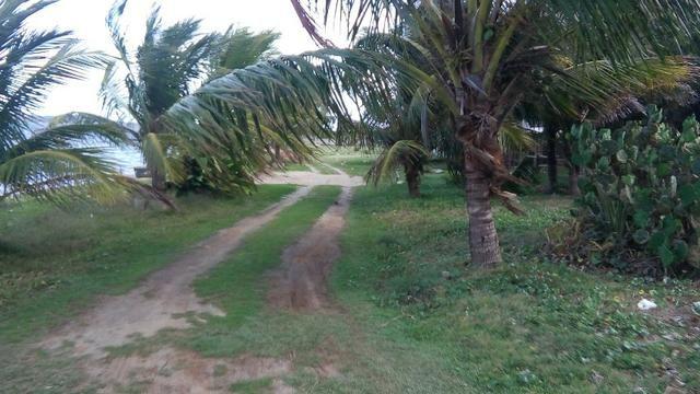 Terreno plano na beira da Lagoa de São Pedro com vista espetacular na Praia da Tereza - Foto 3