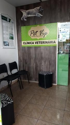 Passo ponto Pet shop e clínica veterinária Arniqueiras