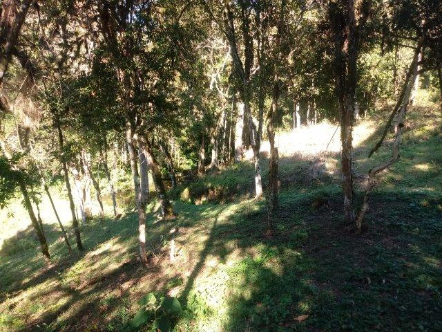 Belissima Chácara em Agudos do Sul/PR 11.500M² - Foto 5