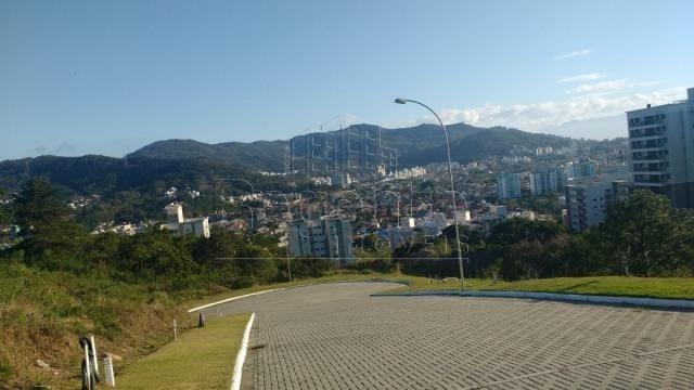 Terreno à venda em Itacorubi, Florianópolis cod:75935 - Foto 11