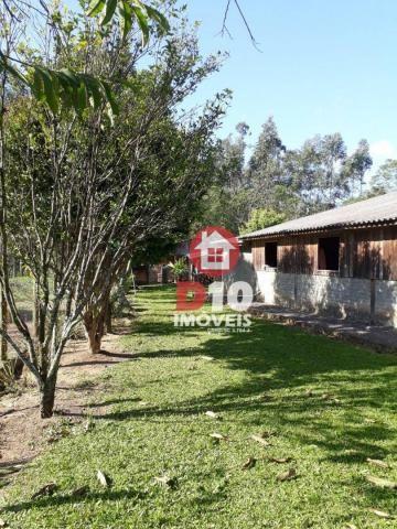 Chácara com 4 dormitórios à venda, 36000 m² por R$ 500.000 - Vila Santa Catarina - São Joã - Foto 12