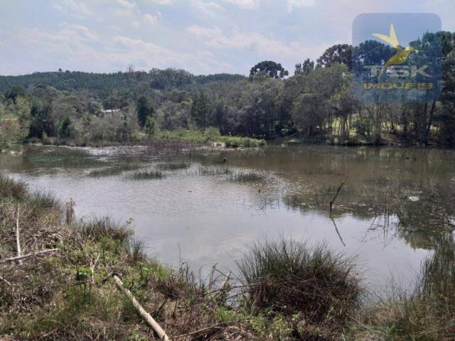 Chácara Lagoa dos Ferreira Mandirituba. CH0289 - Foto 7