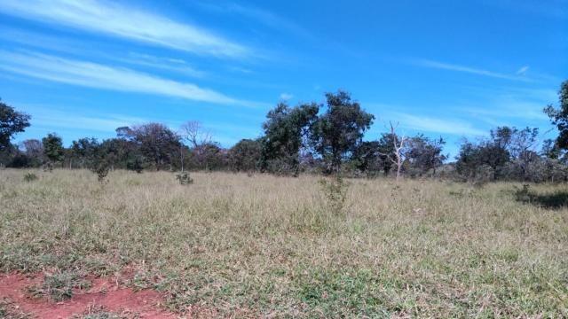 Fazenda 31 hectares em Curvelo/MG. - Foto 3
