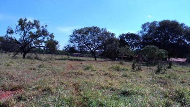 Fazenda 31 hectares em Curvelo/MG. - Foto 13