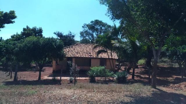 Fazenda 31 hectares em Curvelo/MG. - Foto 6