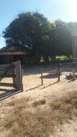 Fazenda c/ 4.985he, c/ capac. p/ 2.000 novilhas, Araguaiana-MT, preço bom - Foto 2