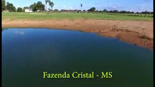 Fazenda em Corumbá - MS. 19.397 hectares - Foto 14