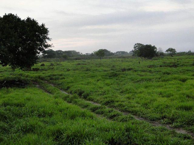 Fazenda em Corumbá - MS. 20.070 hectares - Foto 8
