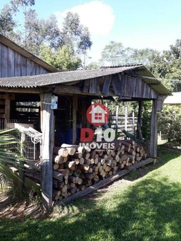 Chácara com 4 dormitórios à venda, 36000 m² por R$ 500.000 - Vila Santa Catarina - São Joã - Foto 7