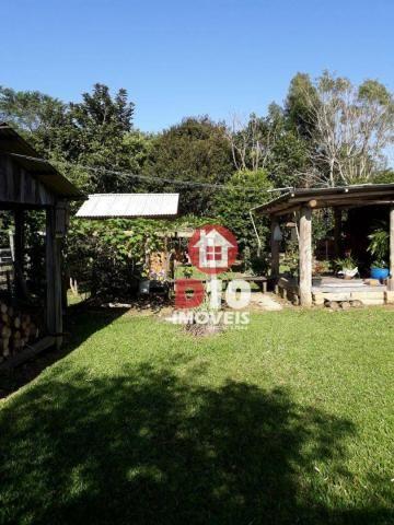 Chácara com 4 dormitórios à venda, 36000 m² por R$ 500.000 - Vila Santa Catarina - São Joã - Foto 8