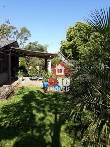 Chácara com 4 dormitórios à venda, 36000 m² por R$ 500.000 - Vila Santa Catarina - São Joã - Foto 14