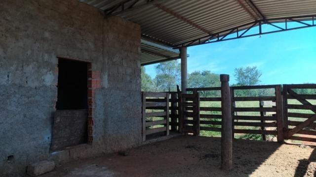 Fazenda 31 hectares em Curvelo/MG. - Foto 14
