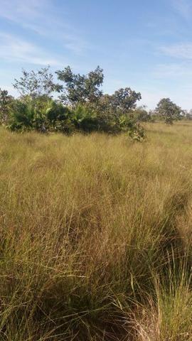 Fazenda c/ 4.985he, c/ capac. p/ 2.000 novilhas, Araguaiana-MT, preço bom - Foto 4