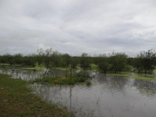 Fazenda sao paulo do potengi - Foto 10