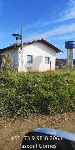 Bahia 200 hectares Pecuária - Foto 6