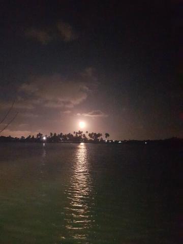 Ilha paradiasiaca na lagoa 100% escriturada e registrada - Foto 8
