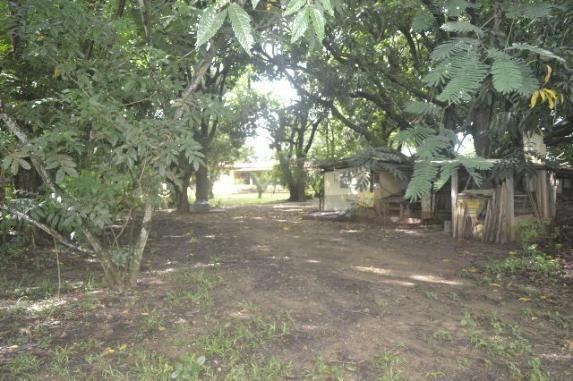 Chácara de 9.237 m² - Vila Morais - Próximo do Jd. Novo Mundo - Foto 8