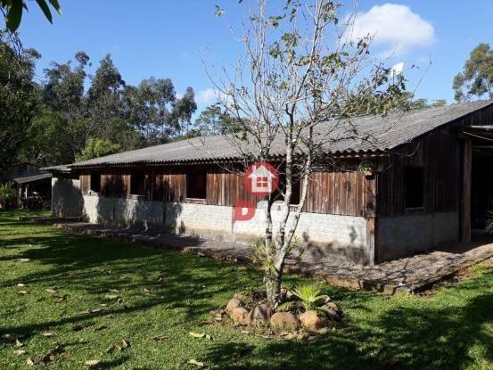 Chácara com 4 dormitórios à venda, 36000 m² por R$ 500.000 - Vila Santa Catarina - São Joã - Foto 17