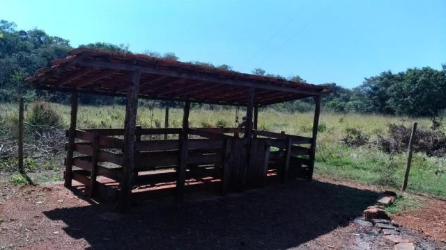 Fazenda 31 hectares em Curvelo/MG. - Foto 8