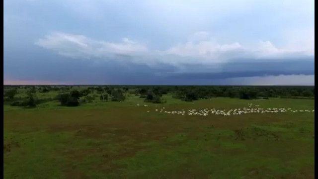 Fazenda em Corumbá - MS. 19.397 hectares - Foto 2