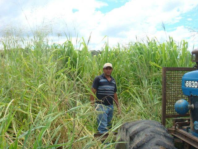 Fazenda em Corumbá - MS. 20.070 hectares - Foto 6