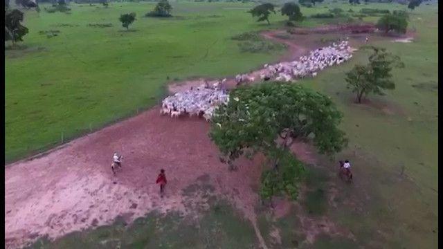 Fazenda em Corumbá - MS. 19.397 hectares - Foto 3