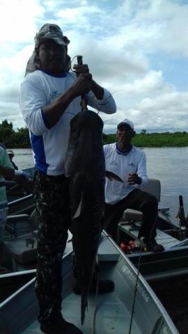 Rancho para pesca e passeio Pantanal (rancho Ma&Vi) Coração do Pantanal - Foto 12