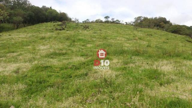 Chácara a venda, próximo ao monumento dos bertussi - r$ 85.000,00 - Foto 5