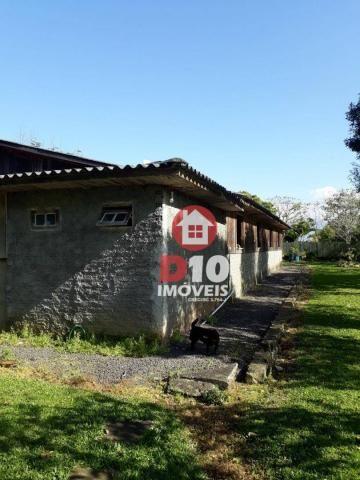Chácara com 4 dormitórios à venda, 36000 m² por R$ 500.000 - Vila Santa Catarina - São Joã - Foto 10