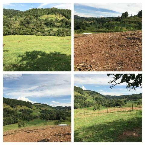 Área Rural - Foto 4