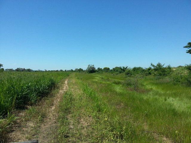 Fazenda em Corumbá - MS. 20.070 hectares - Foto 3