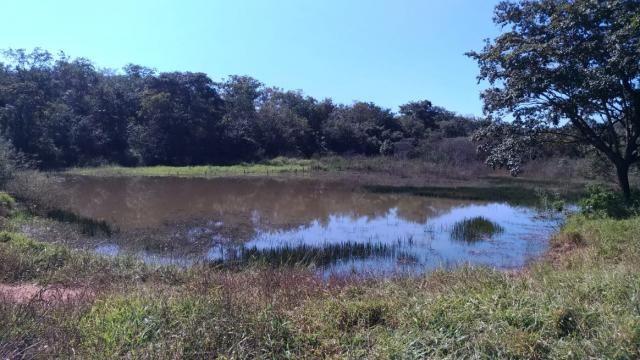 Fazenda 31 hectares em Curvelo/MG. - Foto 5