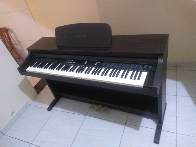 Piano fênix TG-8815