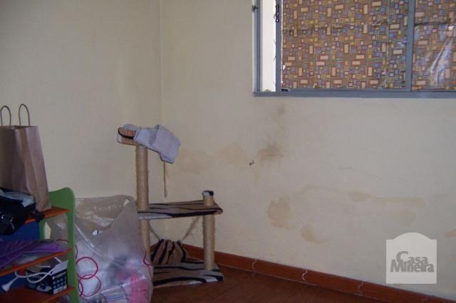 Casa à venda com 4 dormitórios em Padre eustáquio, Belo horizonte cod:212187 - Foto 6