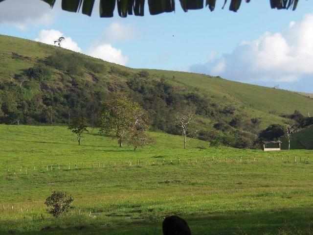 Fazenda com 700 Hectares em Barra de Guabiraba (Cód.: f20568) - Foto 17