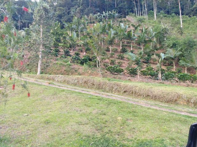 Sítio 8 hectares fim de linha em Paraju Domingos Martins - Foto 6