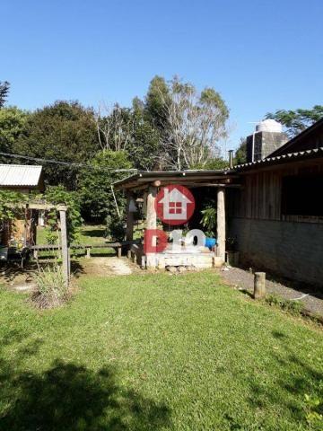 Chácara com 4 dormitórios à venda, 36000 m² por R$ 500.000 - Vila Santa Catarina - São Joã - Foto 11