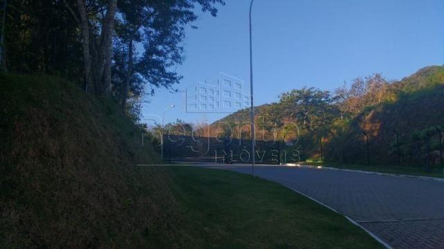 Terreno à venda em Itacorubi, Florianópolis cod:75935 - Foto 7