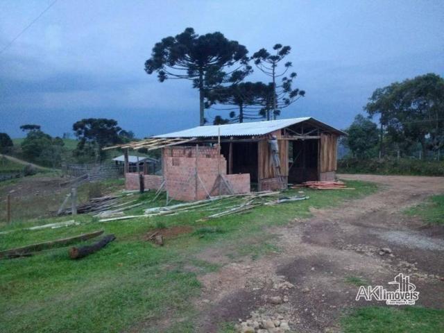Fazenda à venda, 2699994 m² por r$ 6.500.000 - rural - reserva do iguaçu/pr - Foto 5