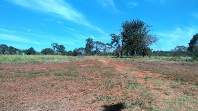 Fazenda 31 hectares em Curvelo/MG.